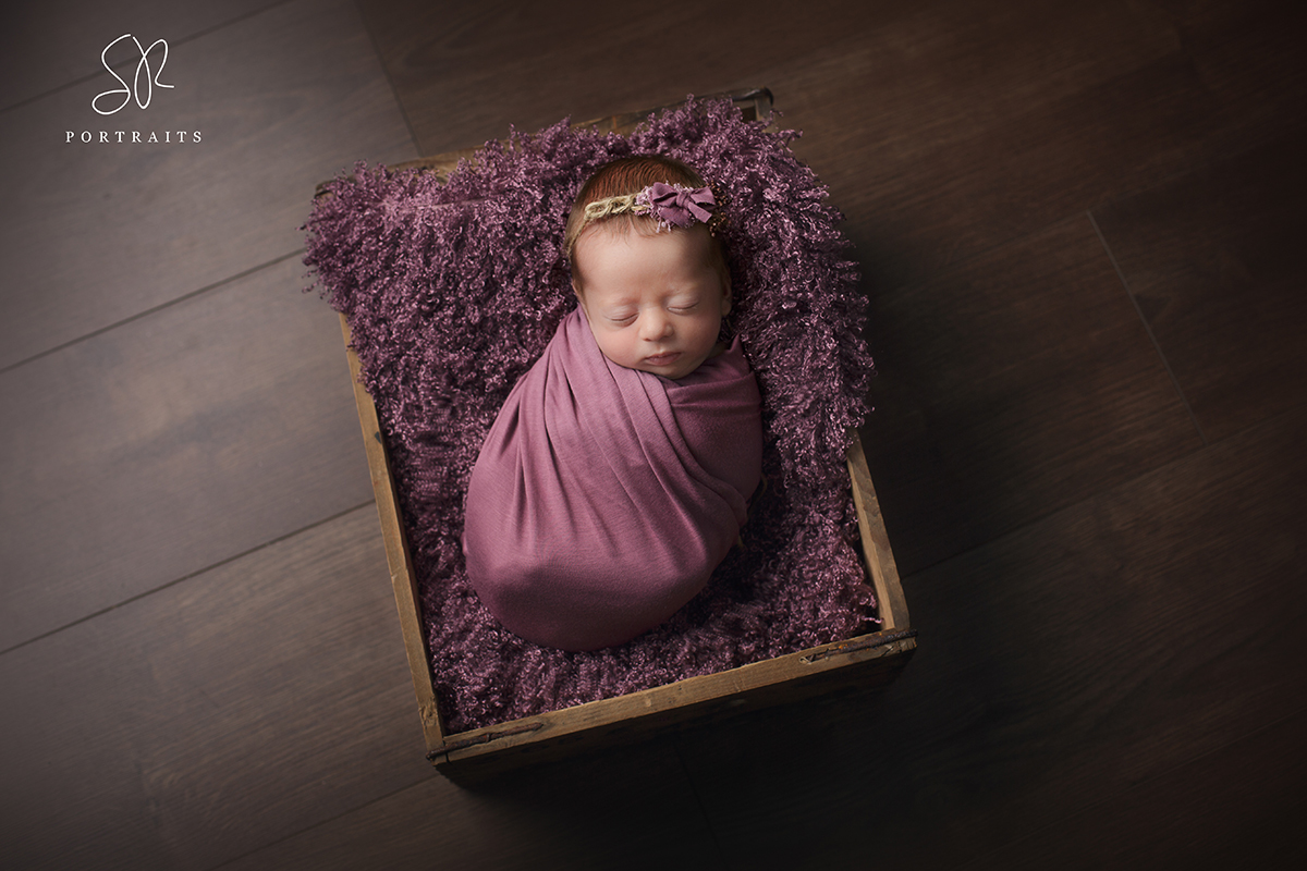 Newborn baby girl in purple wrap in basket prop. Photography Nottinghamshire